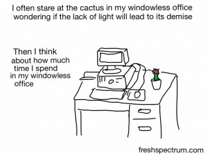 I often stare at the cactus in my windowless office, wondering if the lack of light will lead to its demise. Then I think about how much time I spend in my windowless office.