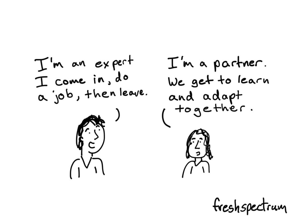 expert-vs-partner