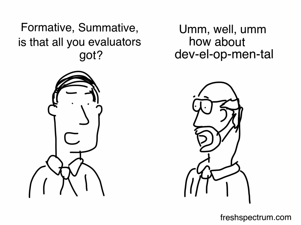 "What is Developmental Evaluation Cartoon by Chris Lysy of Freshspectrum.    ""Formative, Summative, is that all you evaluators got?  Umm, well, umm how about dev-el-op-men-tal."""