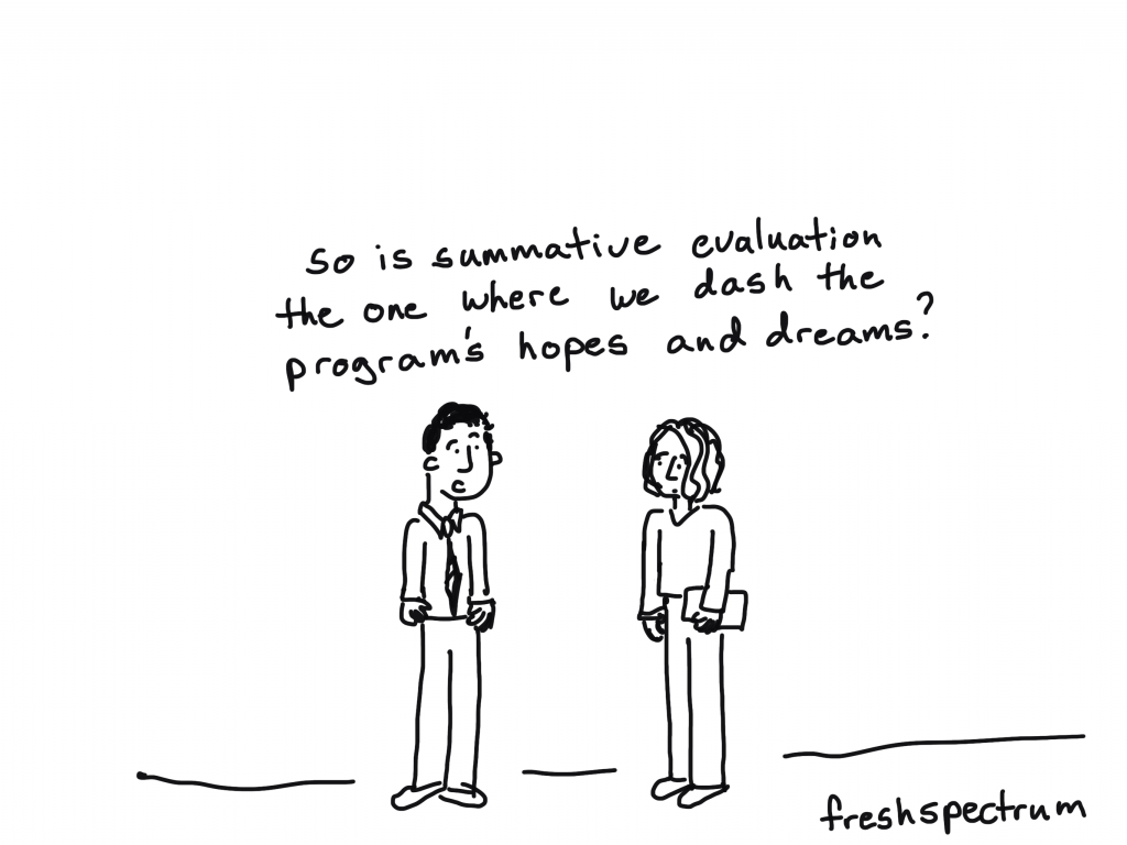What is Summative Evaluation Cartoon by Chris Lysy.  So is summative evaluation the one where we dash the program's hopes and dreams?